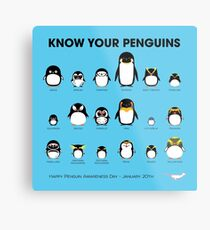 Know Your Penguins Metal Print