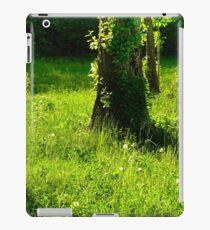 Sunny Glade iPad Case/Skin