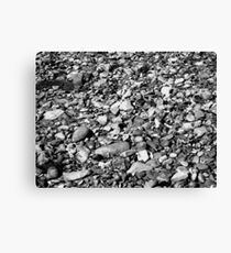 a natural history : monochrome Canvas Print