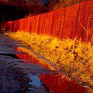 Ruś Czerwona. by © Andrzej Goszcz,M.D. Ph.D