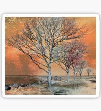 Winter's Dawn Sticker