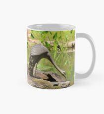 Two Iron Egrets Mug