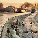 Frozen Lancaster Canal Dec 2010 by Lilian Marshall