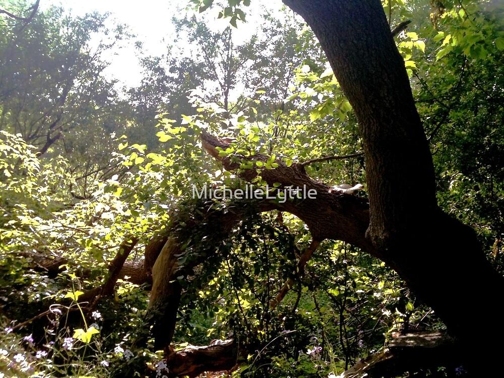Tree Times by MichelleLyttle