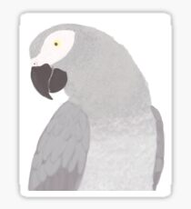 African Grey  Sticker