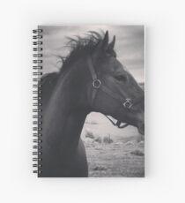 Halo Dancer Spiral Notebook