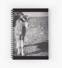 Flynn Spiral Notebook