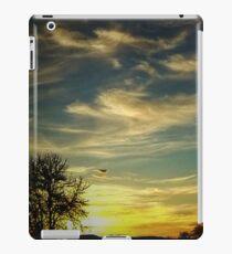"""Nature in Full Color"" iPad Case/Skin"