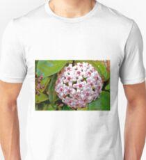 Hoya Carnosa Unisex T-Shirt