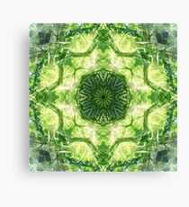 Forest 360 Canvas Print