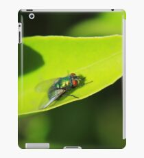 House Fly on a Leaf iPad Case/Skin