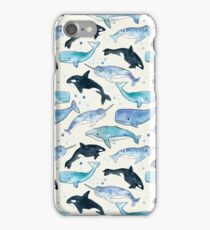 Whales, Orcas & Narwhals iPhone Case/Skin
