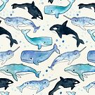 Whales, Orcas & Narwhals by Tangerine-Tane