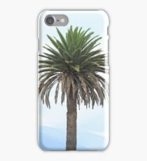 Palm Tree in Ibarra iPhone Case/Skin