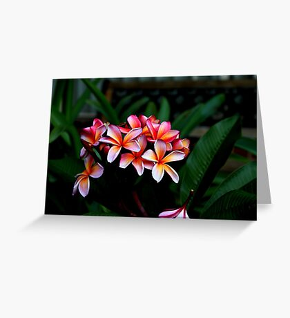 It's Jungle Out There Greeting Card