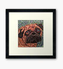 Puggy Framed Print