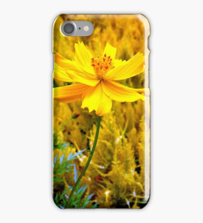 They were all yellow... iPhone Case/Skin
