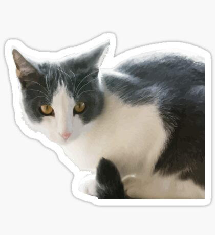 A Max And Mantle Bi Colour Cat Isolated Sticker