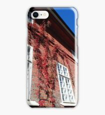 Old Facade iPhone Case/Skin