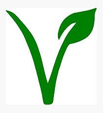 Vegetarian Symbol Photographic Print