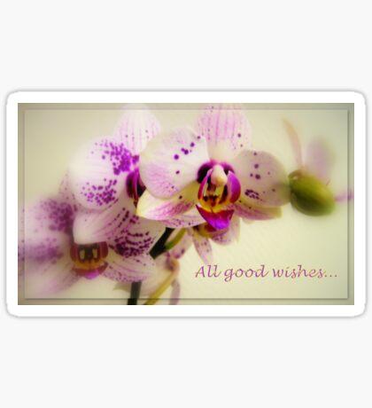 All good wishes... Sticker