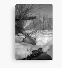 Black and White Snowy Pond Canvas Print