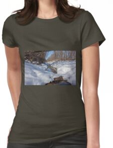 HDR Snowy pond Womens Fitted T-Shirt
