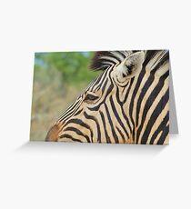 Zebra - African Wildlife - Tranquility Pose Greeting Card