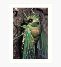 Cicada of Emerald & Gold Art Print