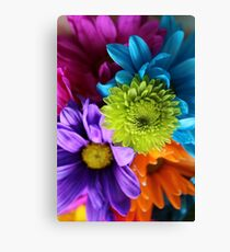 Multi-Colored Flowers Canvas Print