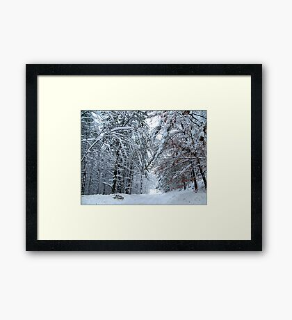 Lost in Wonderland Framed Print