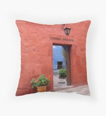 Terracotta Wall Throw Pillow