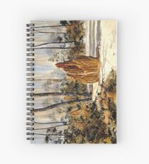 """""""Ant Hills and Galahs, Chillagoe""""  Spiral Notebook"""