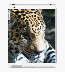 Focused Feline iPad Case/Skin