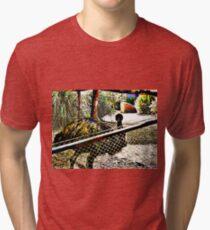 Colourful Emu Tri-blend T-Shirt