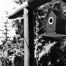 Blue Bird House - B&W by klcblair