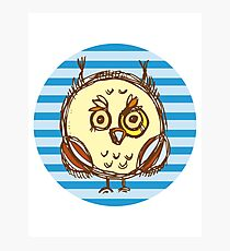 Funny owl blue and brown Photographic Print