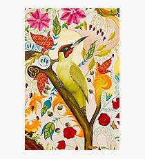 Green Woodpecker Photographic Print