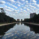 Hermann Park by Christine  Wilson