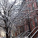 Wet Snow View, Jersey City, New Jersey  by lenspiro