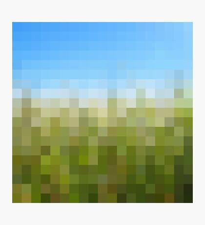 Nature Pixels No 29 Photographic Print