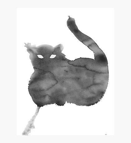 Chat Nuageux • Cloudy Cat • Gato Nublado Photographic Print