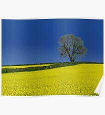 Oak Tree Landscape ( Blue ) Poster