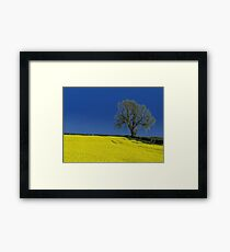 The Oak Tree ( Landscape ) Framed Print