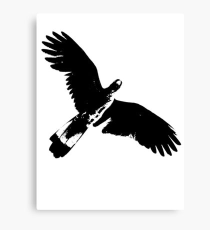 Messenger from The Universe  Canvas Print
