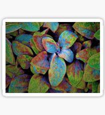 Rainbow Plant Sticker