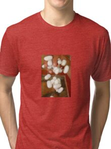 Mullberry Silkworm Cocoons Tri-blend T-Shirt