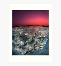Sunset Over the Red Sea Reef Art Print