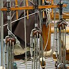 Rigging by SWEEPER