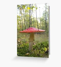 Queen of the Toadstools Greeting Card